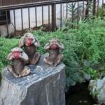 名古屋方面で猿(申)に縁のある神社を紹介しています!