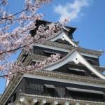 熊本城の桜|お花見開花予想/見ごろ/イベント/アクセス