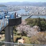 五台山公園の桜と夜景|お花見開花予想/見ごろ/アクセス/駐車場