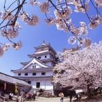 佐賀唐津城(舞鶴公園)の桜|お花見開花予想/見ごろ/夜桜/アクセス