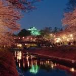 岡崎市岡崎公園の桜|お花見開花予想/見ごろ/イベント/アクセス